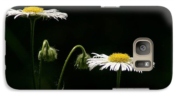 Galaxy Case featuring the photograph Shasta Daisies by Mitch Shindelbower