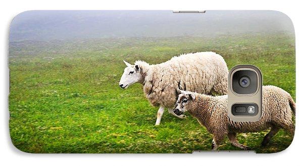 Sheep In Misty Meadow Galaxy S7 Case by Elena Elisseeva