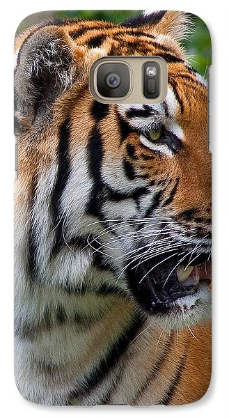Galaxy Case featuring the photograph Siberian Tiger by Cindy Haggerty