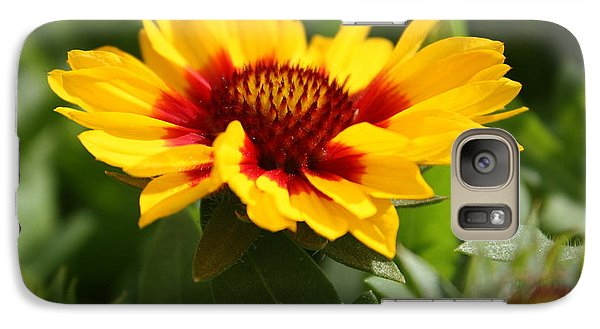 Galaxy Case featuring the photograph Signs Of Summer by Robin Regan