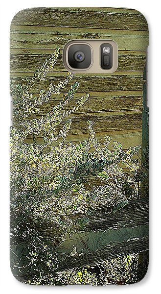 Galaxy Case featuring the photograph Silverleaf In Morning Sun by Louis Nugent