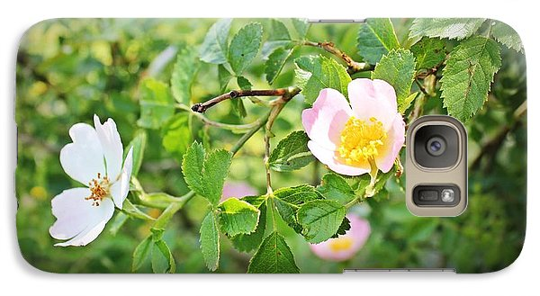 Galaxy Case featuring the photograph Simple Wild Rose by Laurinda Bowling