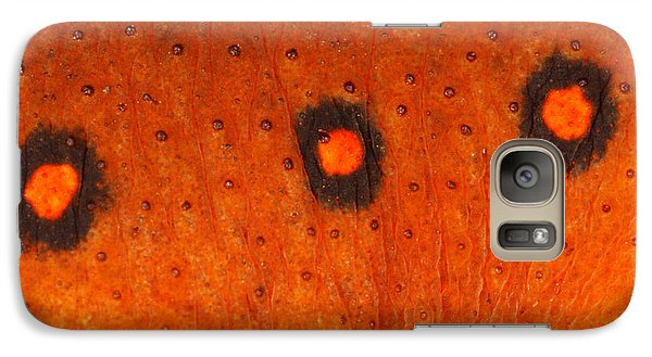 Skin Of Eastern Newt Galaxy Case by Ted Kinsman