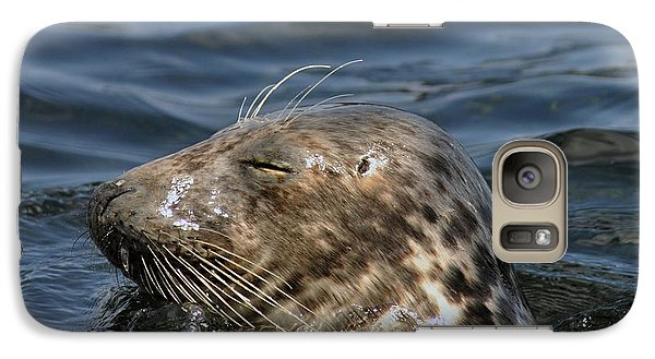 Galaxy Case featuring the photograph Sleepy Seal by Rick Frost