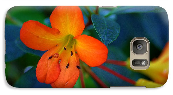 Galaxy Case featuring the photograph Small Orange Flower by Tikvah's Hope