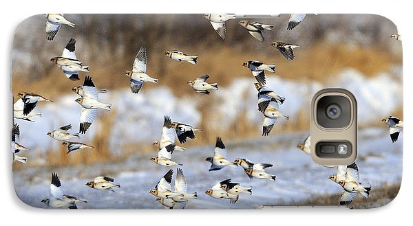Snow Buntings Galaxy Case by Tony Beck