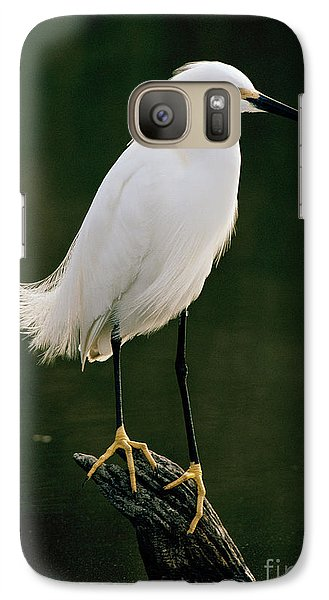 Galaxy Case featuring the photograph Snowy Egret Portrait by Doug Herr