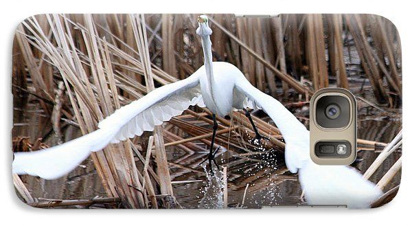 Galaxy Case featuring the photograph Snowy Egret Takeoff by Mark J Seefeldt