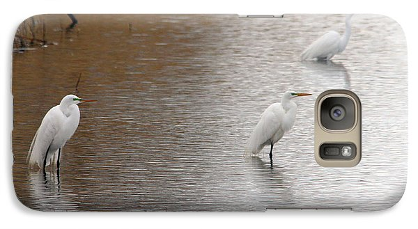 Galaxy Case featuring the photograph Snowy Egret Trio by Mark J Seefeldt