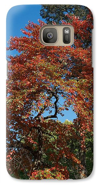 Galaxy Case featuring the photograph Soaring Fall by Joseph Yarbrough