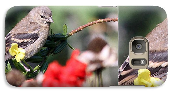 Galaxy Case featuring the photograph Sparrow With Detail by Mark J Seefeldt