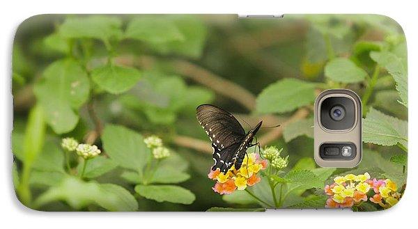 Galaxy Case featuring the photograph Spicebush Swallowtail Butterfly On Lantana Shrub Verbena by Marianne Campolongo