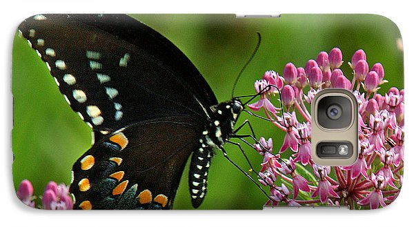 Galaxy Case featuring the photograph Spicebush Swallowtail Din039 by Gerry Gantt