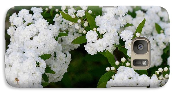 Galaxy Case featuring the photograph Spirea Blooms by Maria Urso