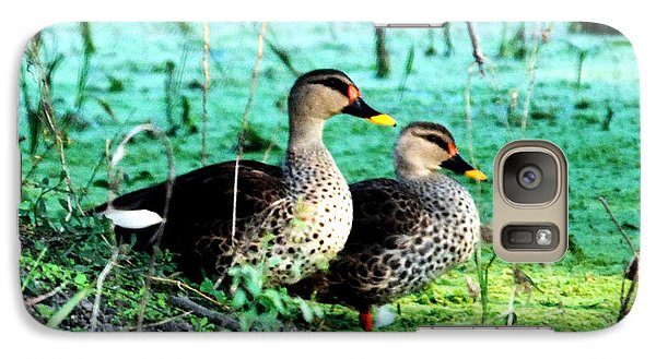 Galaxy Case featuring the photograph Spot Bill Ducks by Pravine Chester