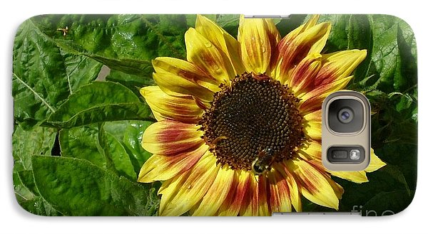 Galaxy Case featuring the photograph Spot The Bee by Jim Sauchyn
