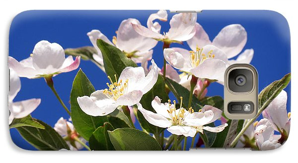 Galaxy Case featuring the photograph Spring Blossoms by Darleen Stry