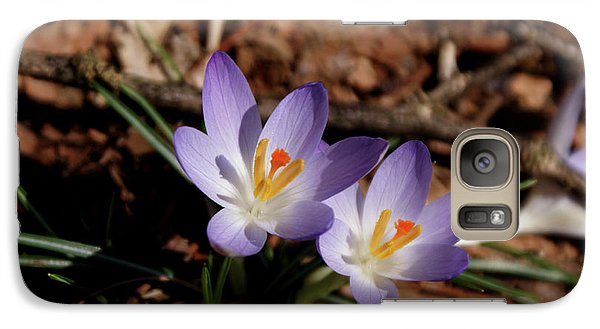 Galaxy Case featuring the photograph Spring Crocus by Paul Mashburn
