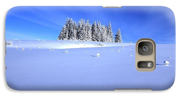 Galaxy Case featuring the photograph Spruce Grove In Winter by Michele Cornelius