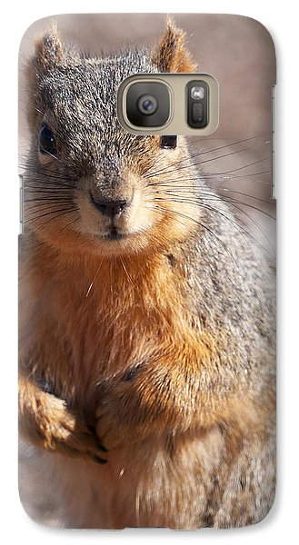 Galaxy Case featuring the photograph Squirrel by Art Whitton