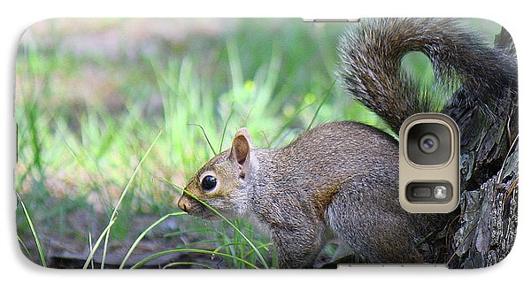 Galaxy Case featuring the photograph Squirrel Hiding In The Grass by Roena King