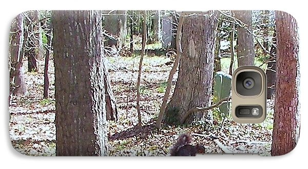 Galaxy Case featuring the photograph Squirrel Waiting by Pamela Hyde Wilson