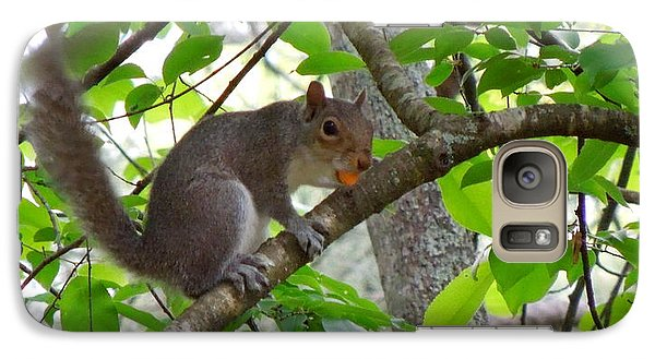 Galaxy Case featuring the photograph Squirrel With Candy by Renee Trenholm