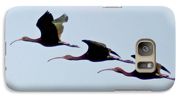 Galaxy Case featuring the photograph Stacked Ibis by Mitch Shindelbower
