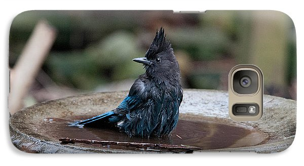 Galaxy Case featuring the digital art Steller Jay In The Birdbath by Carol Ailles