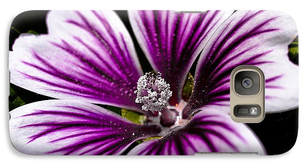 Galaxy Case featuring the photograph Stripped Blossom by Larry Carr