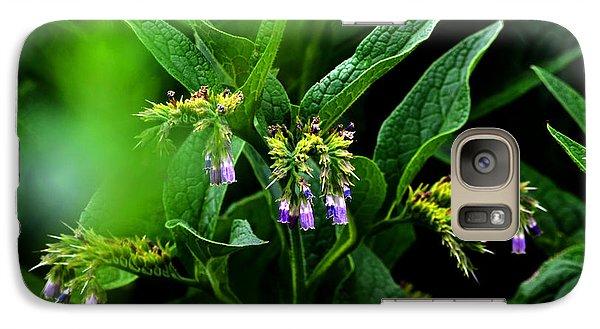 Galaxy Case featuring the photograph Summer Comfrey Blooms by Susanne Still