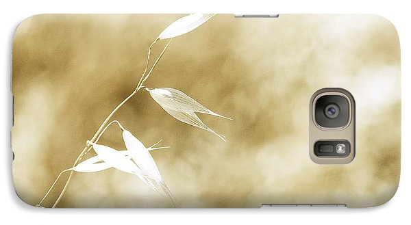 Galaxy Case featuring the photograph Summer Grass by Artist and Photographer Laura Wrede