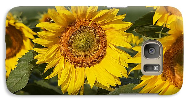 Galaxy Case featuring the photograph Sun Flower by William Norton