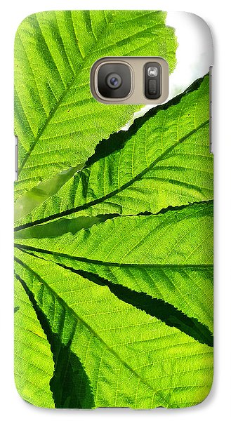 Galaxy Case featuring the photograph Sun On A Horse Chestnut Leaf by Steve Taylor