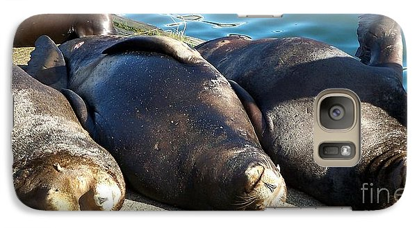 Galaxy Case featuring the photograph Sunbathing Sea Lions by Chalet Roome-Rigdon