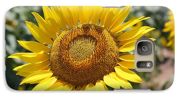 Galaxy Case featuring the photograph Sunflower by Donna  Smith