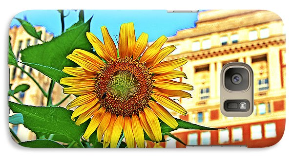 Galaxy Case featuring the photograph Sunflower In The City by Alice Gipson
