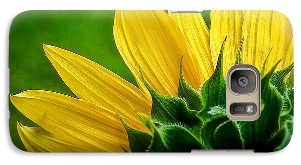 Galaxy Case featuring the photograph Sunflower by Larry Carr