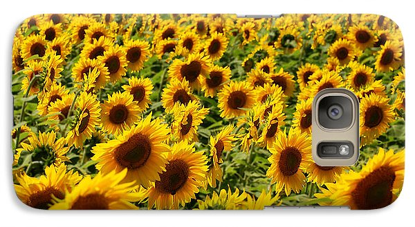 Galaxy Case featuring the photograph Sunflower Panorama by Nancy De Flon