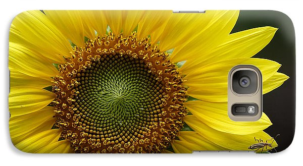 Galaxy Case featuring the photograph Sunflower With Insect by Daniel Reed