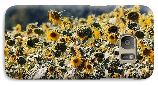 Galaxy Case featuring the photograph Sunflowers by Maureen E Ritter