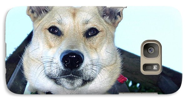 Galaxy Case featuring the photograph Sunny by Rory Sagner