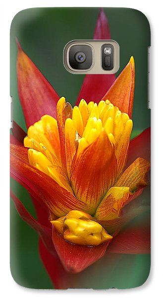 Galaxy Case featuring the photograph Sunrise - Sunset by Anne Rodkin