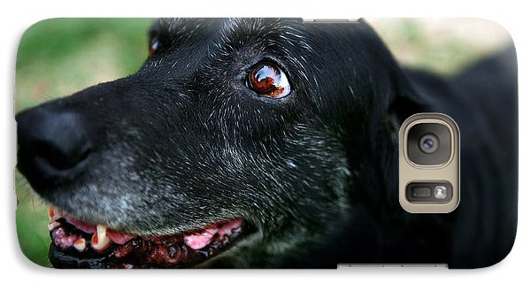 Galaxy Case featuring the photograph Sweet Mariah by Lon Casler Bixby