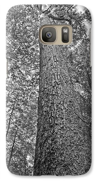 Galaxy Case featuring the photograph Tall Tree With Sunshine by Susan Leggett