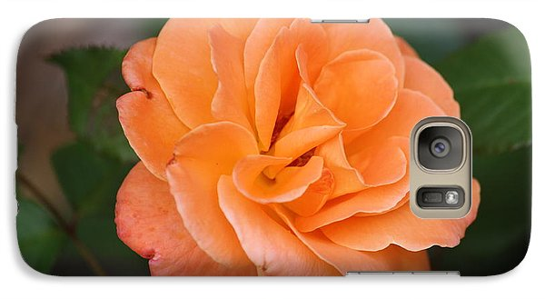 Galaxy Case featuring the photograph Tangerine Rose by Donna  Smith