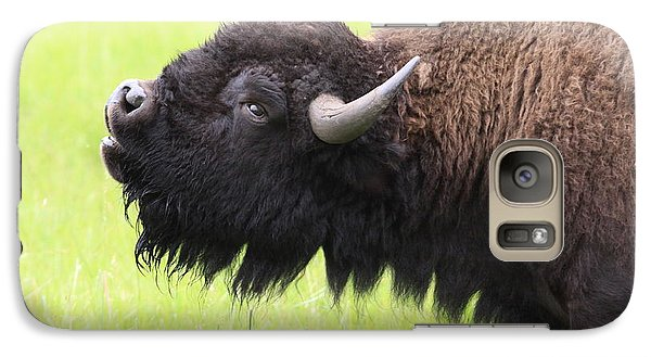 Galaxy Case featuring the photograph Tatanka by Kate Purdy