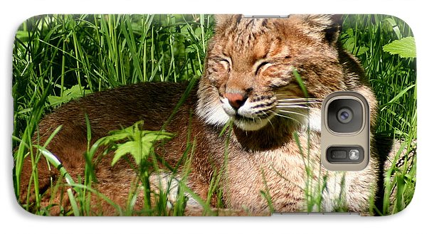 Galaxy Case featuring the photograph The Bobcat's Afternoon Nap by Laurel Talabere