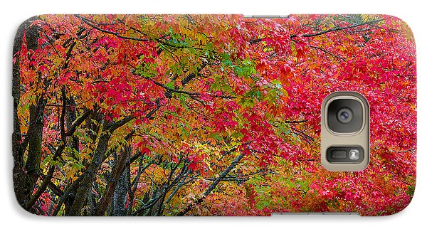 Galaxy Case featuring the photograph The Color Of Fall by Ken Stanback