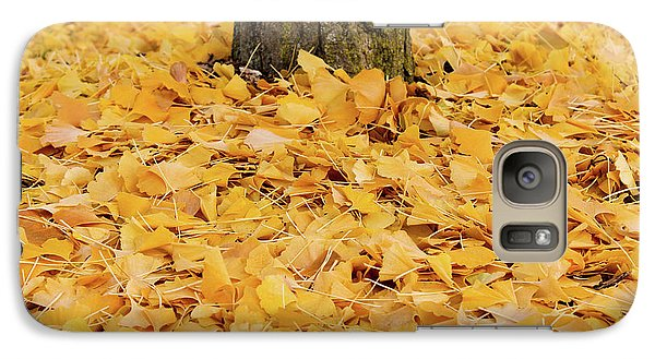 Galaxy Case featuring the photograph The Fall Of Ginkgo by Rachel Cohen